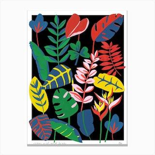 Roam Wild And Free Canvas Print