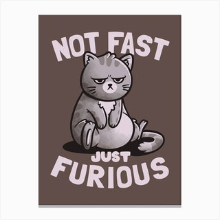 Not Fast Just Furious Canvas Print