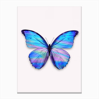 Holographic Butterfly Canvas Print