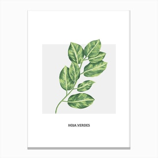 Green Leafs & Grey Box Canvas Print