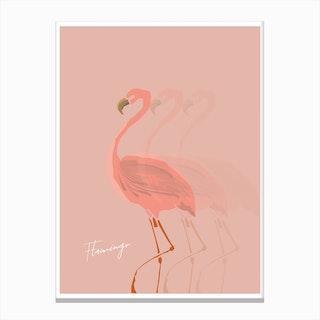 Flamingo Shadow Canvas Print