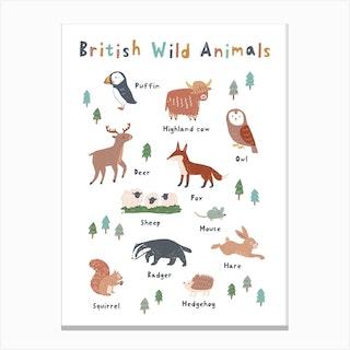British Wild Animals Canvas Print