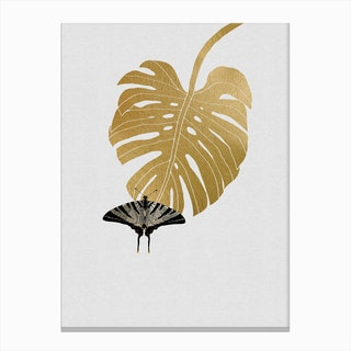 Butterfly & Monstera Canvas Print