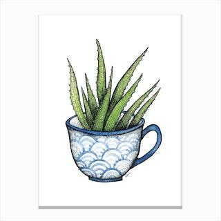 Succulent In A Blue Cup Canvas Print