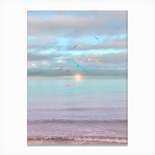 Colorful Seagulls Flying Canvas Print
