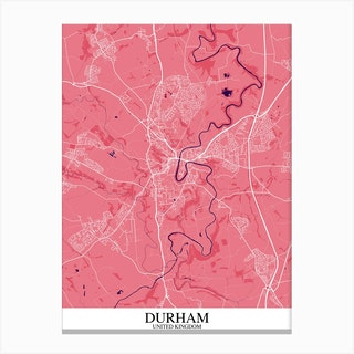 Durham Pink Purple Canvas Print
