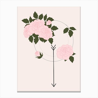 Pink Rose And Arrow Canvas Print
