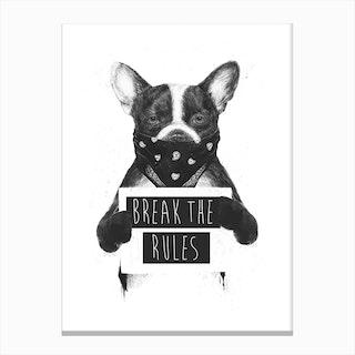 Rebel Dog Canvas Print