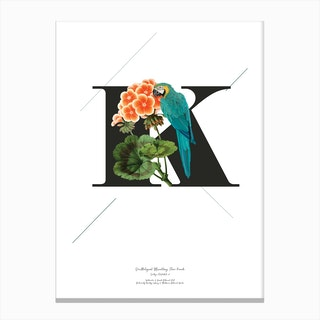 Botanical Alphabet K Canvas Print
