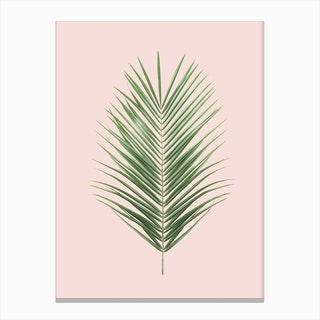 Blush Palm Leaf Canvas Print