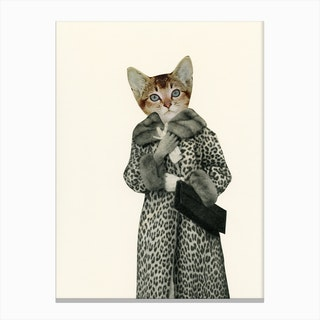 Kitten Dressed As Cat Canvas Print