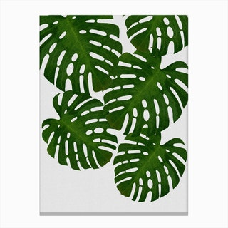 Monstera Leaf I Canvas Print