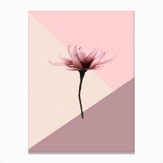 Aesthetic Flower Canvas Print