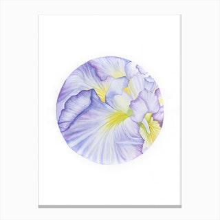 Iris Amethyst Flame Canvas Print