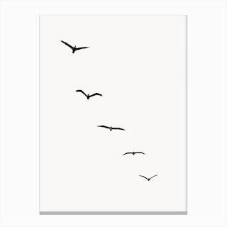 Five Birds Canvas Print