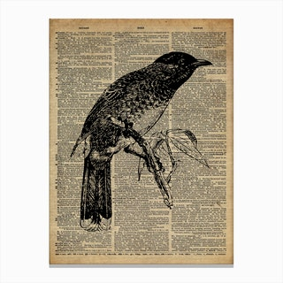 Starling Bird Canvas Print