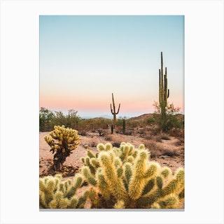 Cactus Desert Sunset Canvas Print