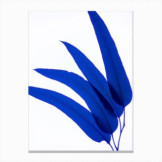 Blue Leaf I Canvas Print
