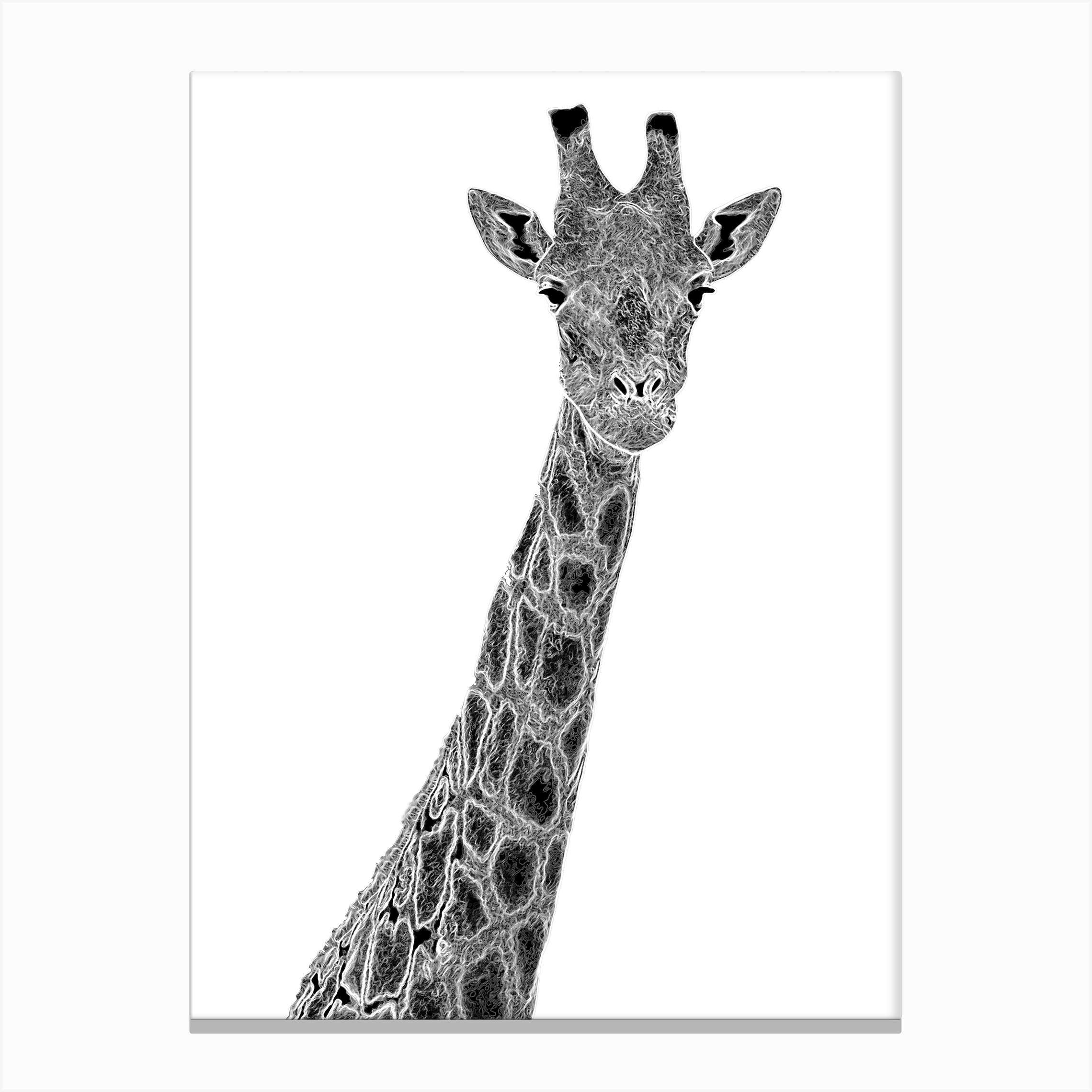- Giraffe Graphic Canvas Print By Els Print Shop - Fy