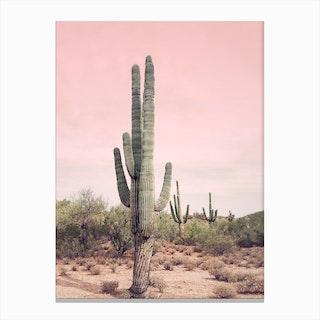Blush Sky Desert Canvas Print
