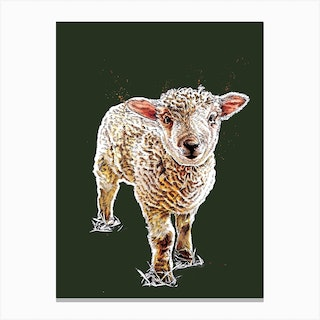 The Lamb On Forest Green Canvas Print