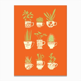 Teacup Succulents Canvas Print