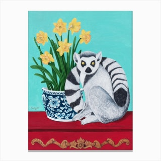 Lemur And Daffodil Canvas Print