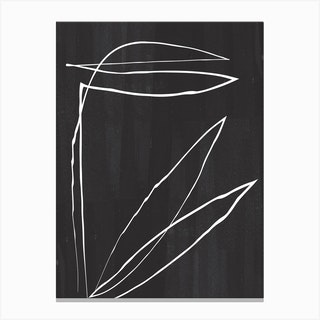 Abstract Botanic Line Drawing Canvas Print