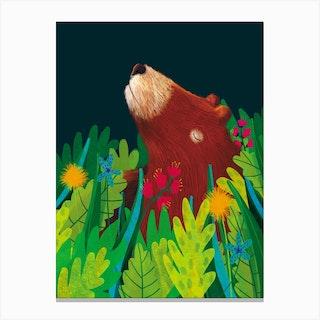 Grizzly Bear Foliage Canvas Print