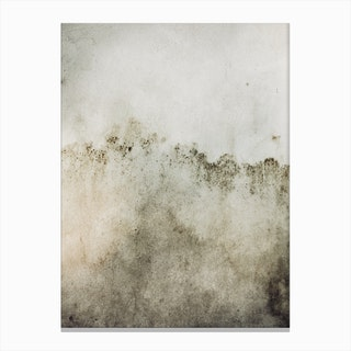 Washed Wall Canvas Print