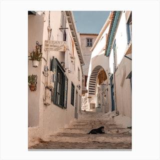 Greek Alley With Dog Hydra Greece Canvas Print