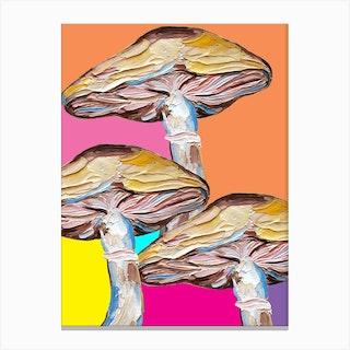 Mushrooms On Rainbow Quilt Canvas Print