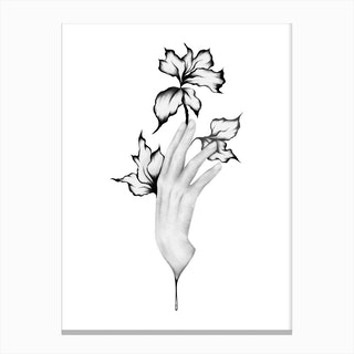 Hand Study Canvas Print