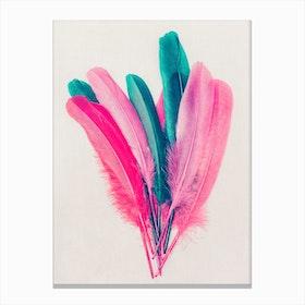Feather Bouquet Canvas Print