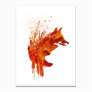 Plattensee Fox Canvas Print