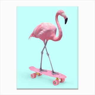 Skate Flamingo Canvas Print