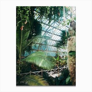 Cuninghams Botanic Garden Ii Canvas Print