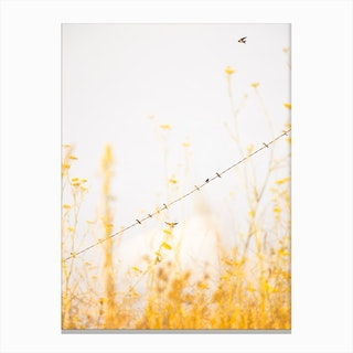 Birds on a Wire - Yellow Canvas Print