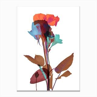 Ode aux Fleurs Canvas Print