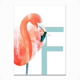 F Flamingo Canvas Print