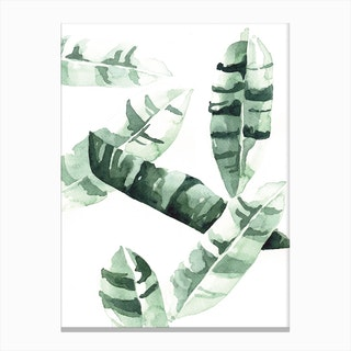 Banana Leaves  I Canvas Print