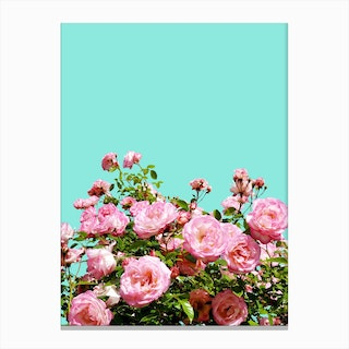 Blissful In Canvas Print