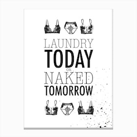 Laundrey Today Or Naked Tomorrow Canvas Print