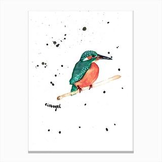 Mr Kingfisher Canvas Print