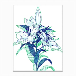 Lilies With Shadow Canvas Print
