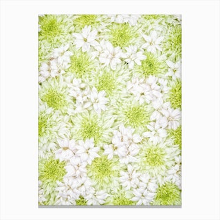 White Green Flowers Canvas Print
