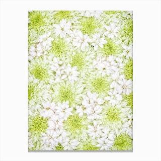 White Green Flowers Canvas Print