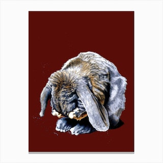 Belated Bunny On Red Oxide Canvas Print