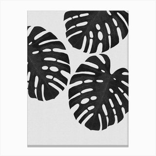 Monstera Leaf Black & White III Canvas Print