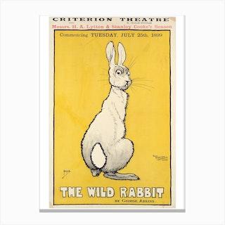 The Wild Rabbit Canvas Print